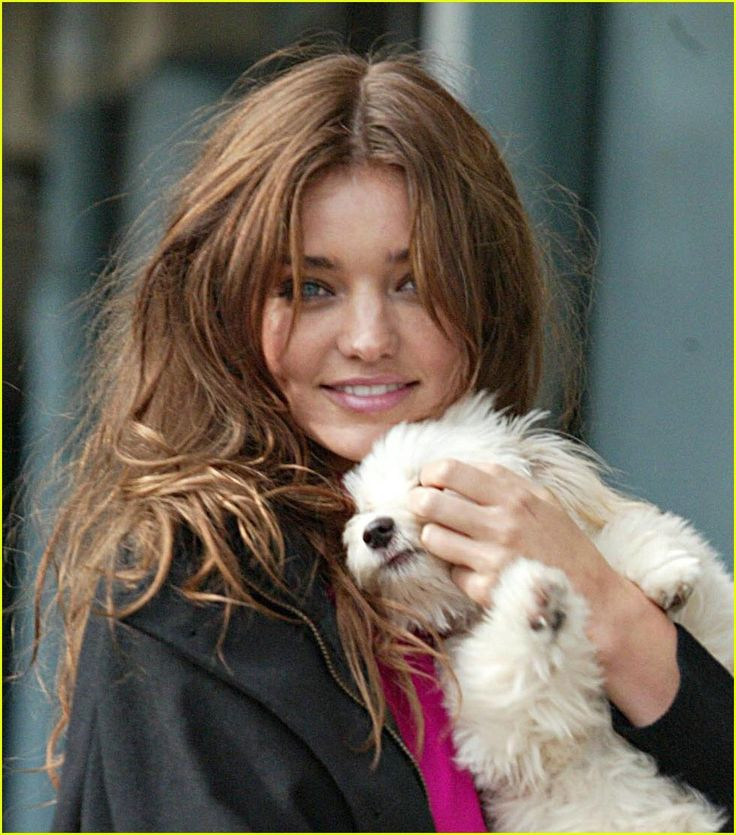 Dog Sweater - POPSUGAR Celebrity