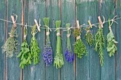 Heilkräuter wie Lavendel, Salbei oder Minze sind gesund und schön. Werden die Sträuße zum Trocknen aufgehängt sind sie ein duftender Blickfang.