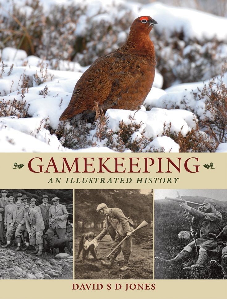 Gamekeeping: An Illustrated History by David S D Jones. #Game #birds #country #book #history #GBGameWeek