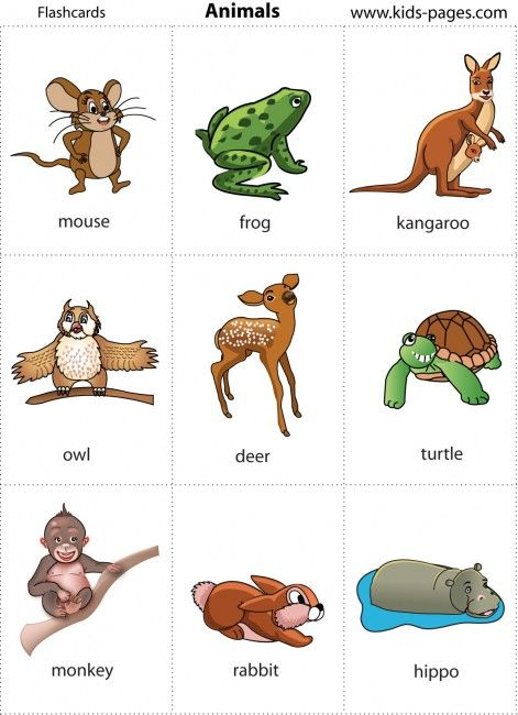 Vocabolario con immagini inglese | AiutoDislessia.net ...