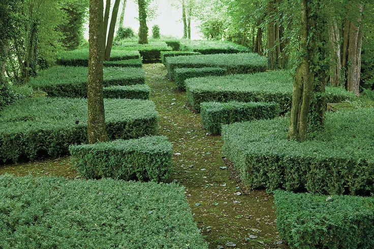 Louis Benech's Gardens, , Variegated and plain box topiaries define a path at a Normandy estate. NYTimes.com