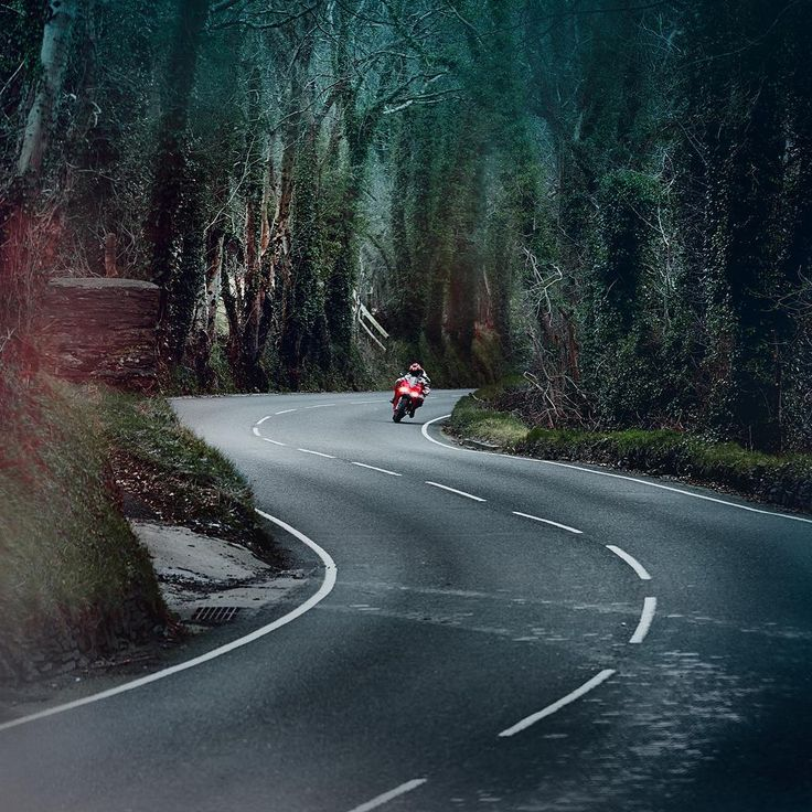 Photo by Agnieszka Doroszewicz. @agnieszkadoroszewicz #nature #bike #motorbike #motorcycle #racing #race #fast #redbike #motorsport #forest #trees #mood #countryroads #rural #landscape #landscape_lovers #isleofman #photography #photooftheday #professional #photographer #illgrammers #agameoftones #visualsoflife #justgoshoot #photomafia #severinwendeler #agnieszkadoroszewicz