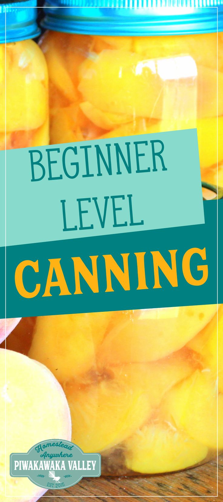 Beginner canning help for stone fruit (peaches).  Once you learn this you will be equipped to apply what you learn to other fruits as well.#affiliatelink #fruitgarden