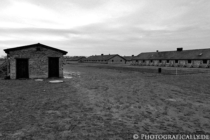 An analysis of the research on birkenau concentration camp