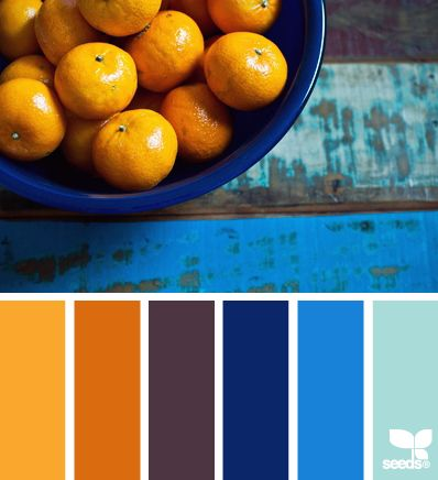 citrus blues -OH MY I think I would very much like a kitchen in these colours!  OHH my I can see it now blue tile back splashes and window dressings orange towels and such and a bright orange table!