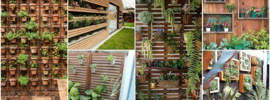 настенные сады