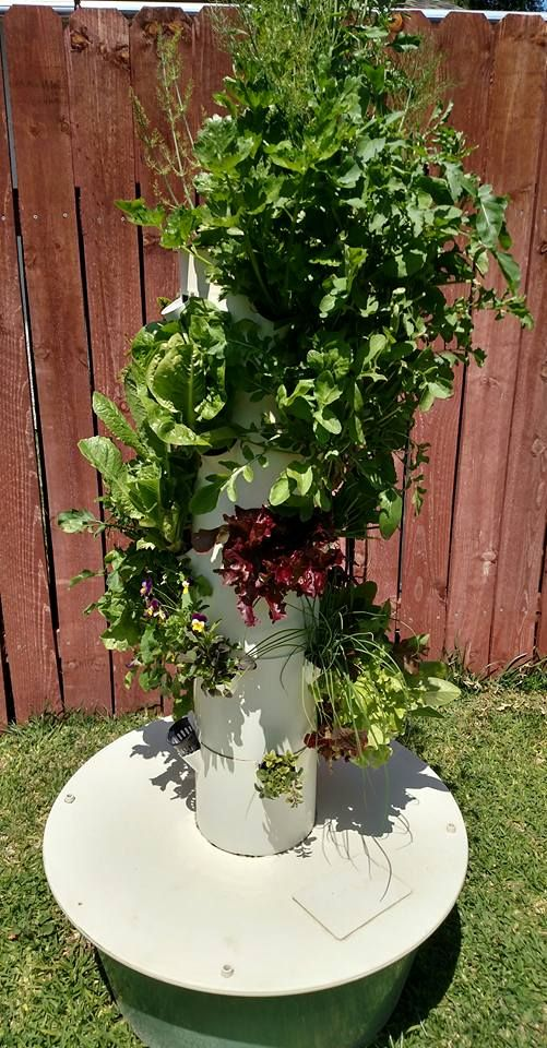 121 best Tower Garden images on Pinterest   Tower garden, Tours and ...