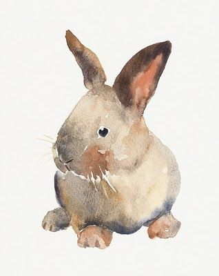 Watercolor #rabbit #illustration repinned by: www.website-designers.co.nz/