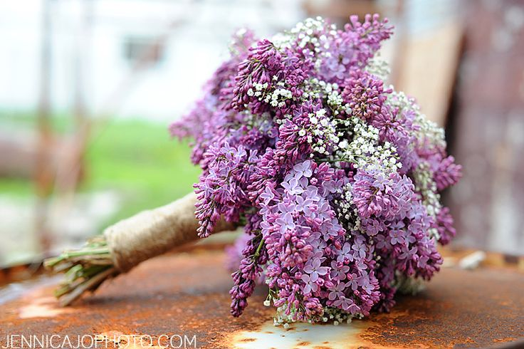 lilac bouquets are beautiful