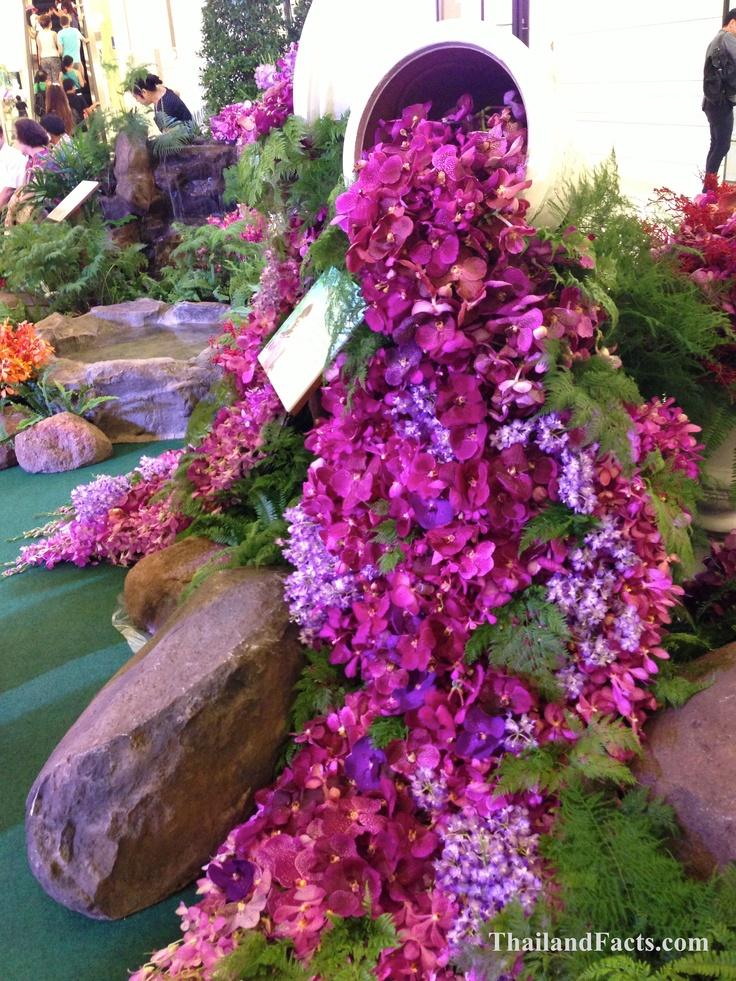 ThailandFacts.com orchid horn of plenty
