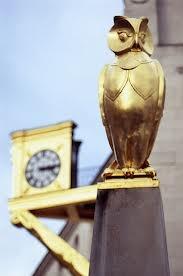 leeds town hall - owls
