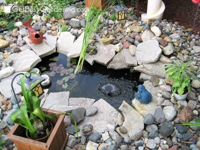 How To Keep Pond Water Clear Naturally And Get Rid Of Pond Algae With Images Ponds For Small Gardens Pond Algae Small Backyard Ponds