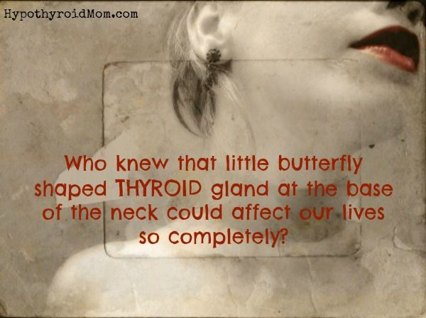 Who knew that little butterfly-shaped thyroid gland at the base of our necks could affect our lives so completely? HypothyroidMom.com