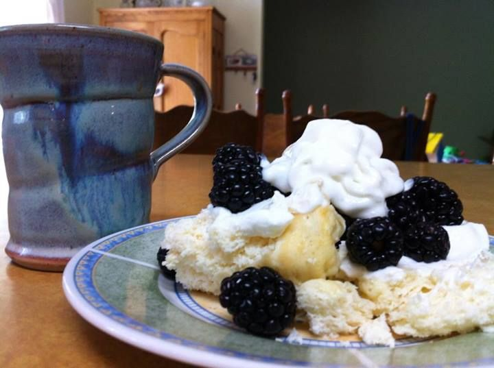 """""""Cake in a Mug"""":  1 T. of Greek yogurt, 2 T. vanilla whey protein powder, 1 egg white, 1 T. of water, 1/2 tsp. baking powder, vanilla and butter extracts, and sweetener. Topped with sweetened Greek yogurt, blackberries, and fat free whip cream.  (THM - Fuel Pull)"""