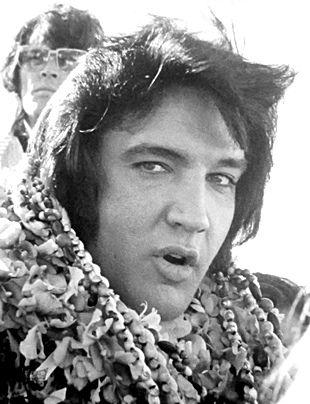 Elvis 1973                                                                                                                                                                                 More