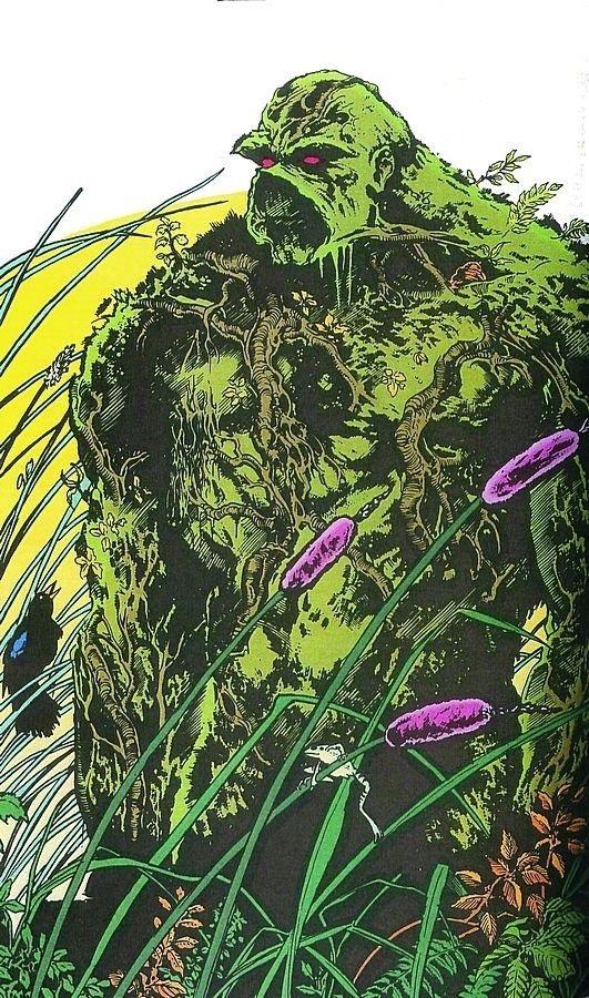 Swamp Thing: Comics Art Swamp Things Book Art Things Alex Comics ...
