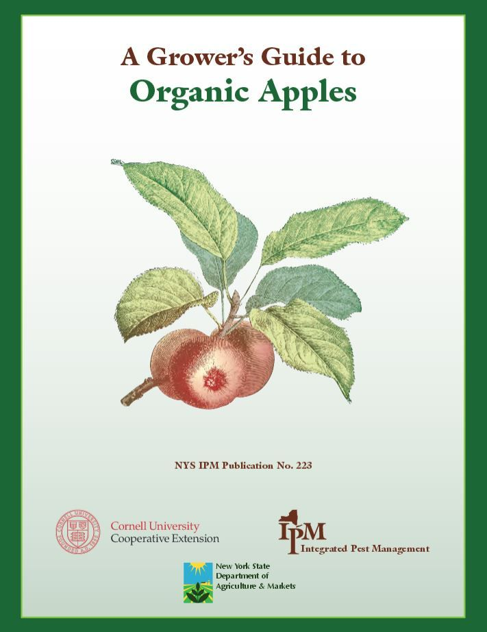 A Grower's Guide to Organic Apples | Cornell