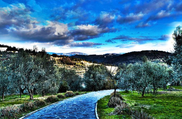 Tuscan Garden extra green hdr Here is another photograph processed in HDR with three photos taken with different parameters, a beautiful garden in the hills of Florence (Italy) #garden   #hdr   #nikon   #tuscany   #olive