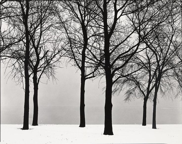 """We're closing today at 2 pm due to the storm. All MoMA Film screenings for the remainder of the day have been cancelled. We plan to be open regular hours tomorrow, but please check our social media channels or moma.org for the latest updates. Stay safe, everyone! ❄️ [Harry Callahan. """"Chicago."""" c. 1950. The Museum of Modern Art, New York. © 2016 The Estate of Harry Callahan]"""