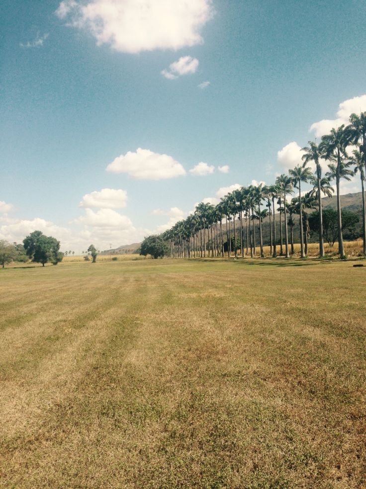 Aragua, Hacienda Santa Teresa, Ron y Rugby