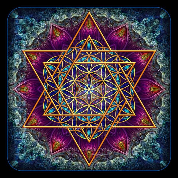 Flower of Life Fractal Star of David by Lily A. Seidel