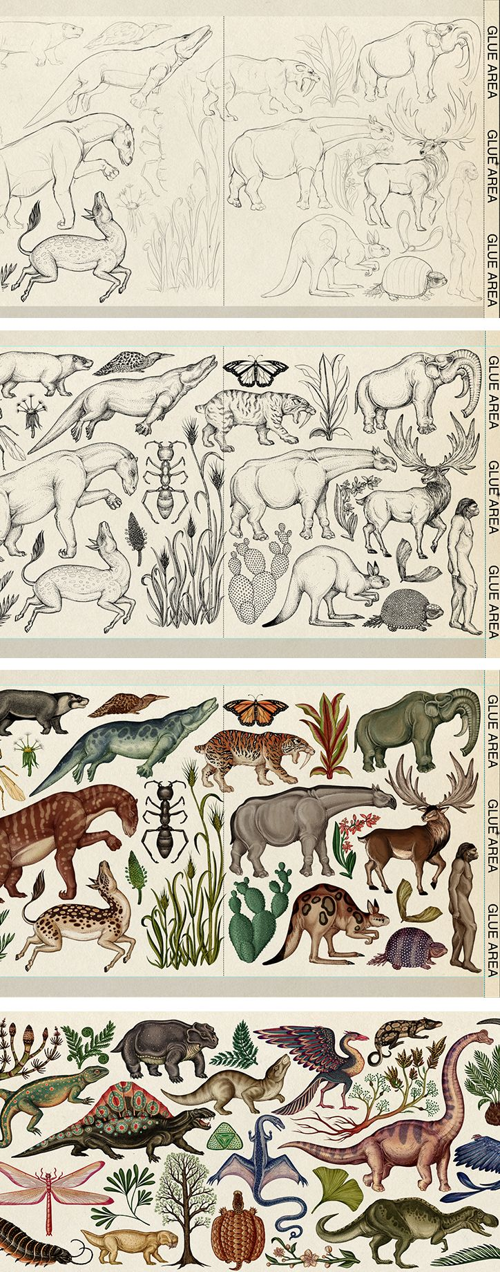 Illustrator Katie Scott shares the intricate working process behind her new book on evolution / It's Nice That