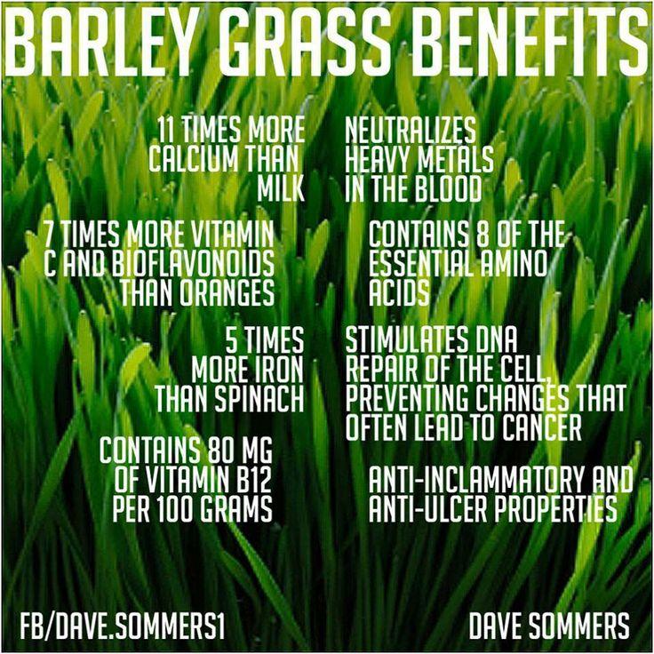 Barley grass **anti-inflammatory.
