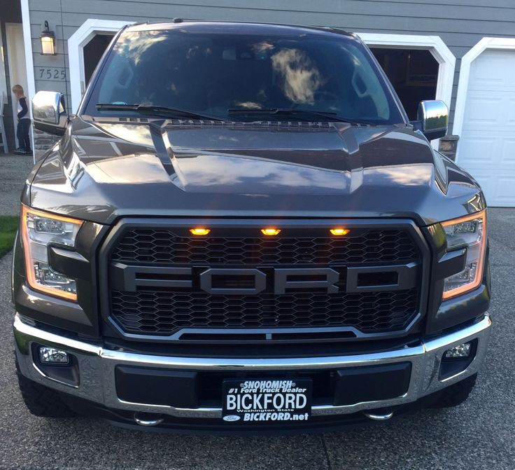 Grill Options Raptor Style Grill - Ford F150 Forum - Community of Ford Truck Fans