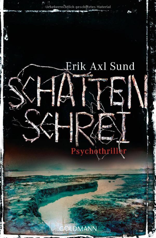 Schattenschrei: Psychothriller - Band 3 der Victoria-Bergman-Trilogie von Erik Axl Sund