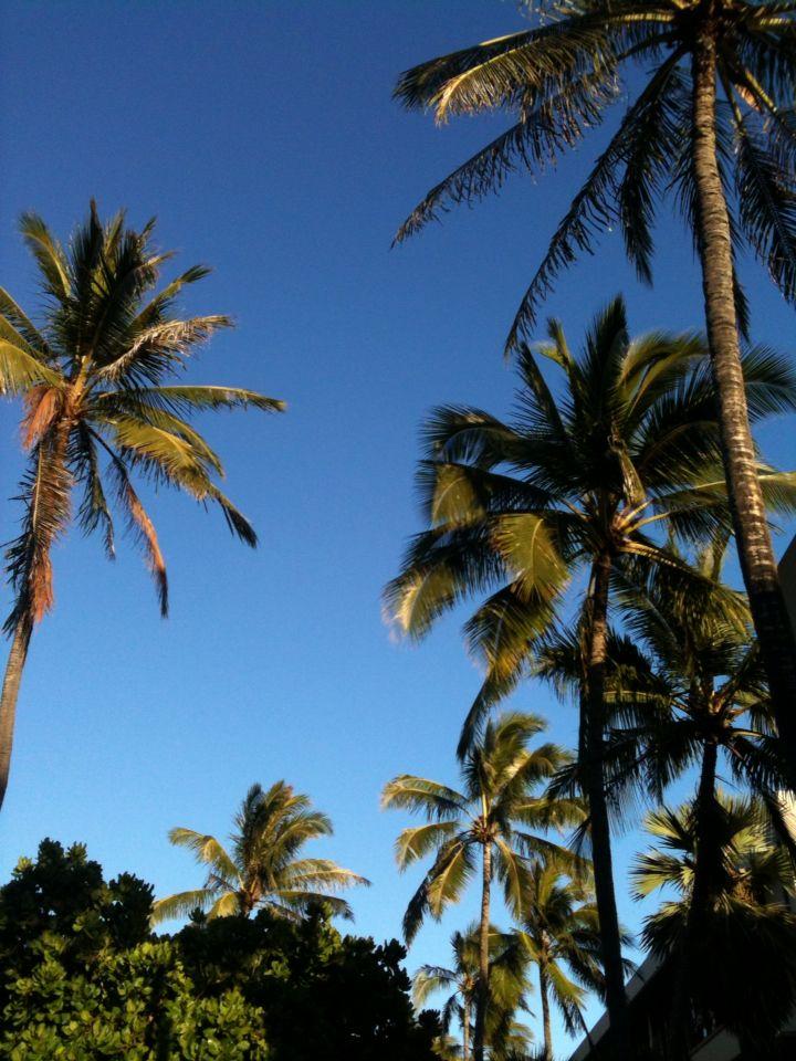 Pure Hawaii.