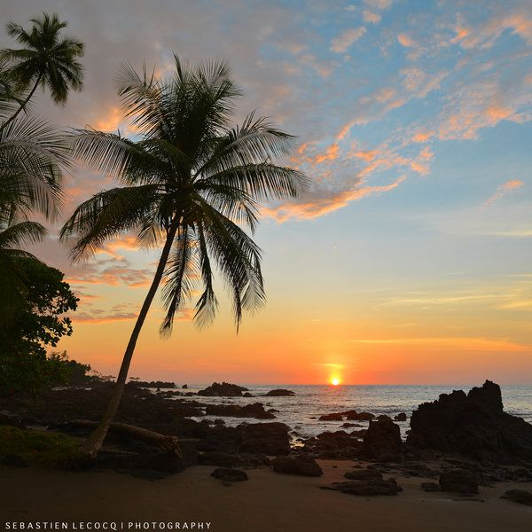 Osa Peninsula Costa Rica Hotels: 17 Best Images About Corcovado National Park, Osa