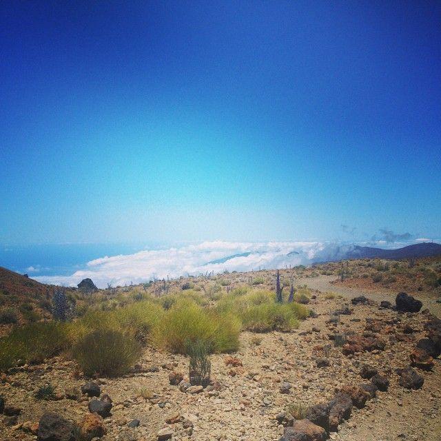 schöner Ausblick bei dem Aufstieg zum #Teide