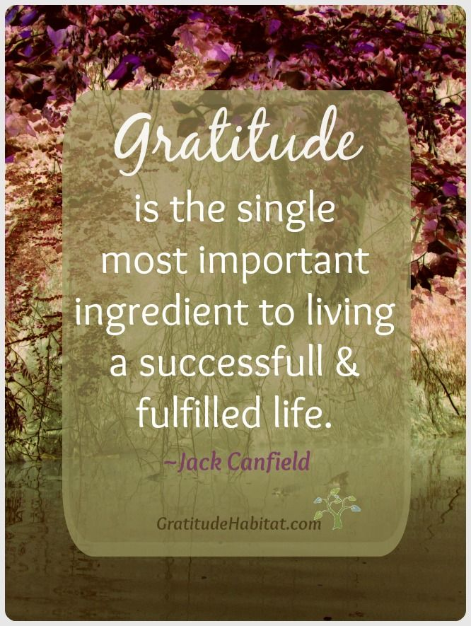 """Gratitude"" it is the single most important ingredient to living a successfull & fullfilled life..."