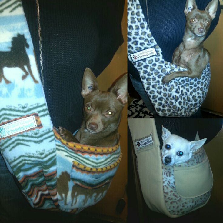 "More new Doggie Bags from Dancing Dog Supplies! Keep your little dogs warm and safe this Winter.  One of a kind Doggie Bags (dogs 10lbs and under), felt-lined with cushioned pillow and 1-2 pockets. $40/each Come see us this Sunday, November 20th, 2016 from 11-2:30pm at the ""Christmas Market & Cafe""  #Scandinavian Cultural Centre  (764 Erin Street) #Winnipeg   https://www.facebook.com/events/1792862884301074/?ti=cl"