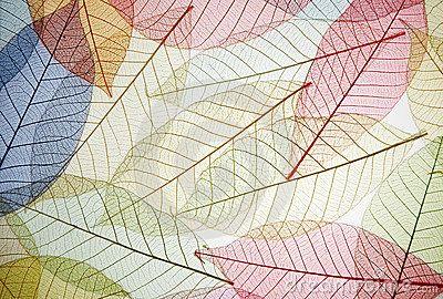 Diseño, patrón, fondo, formado por hojas.