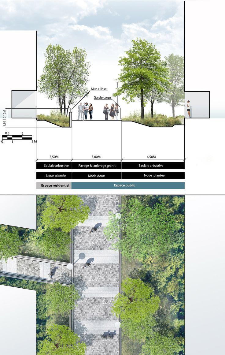Plan coupe sur l'espace public