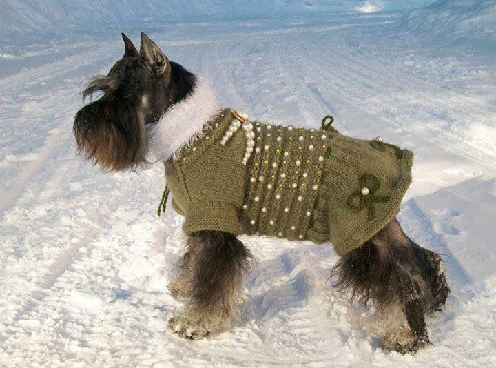 Stunning sweater!
