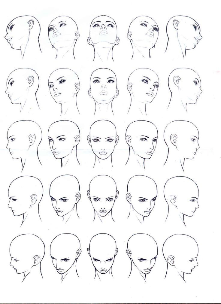 Drawn Face Reference 13 Face Angles Body Drawing Human Body Drawing
