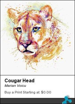 Watercolor head portrait of a cougar.
