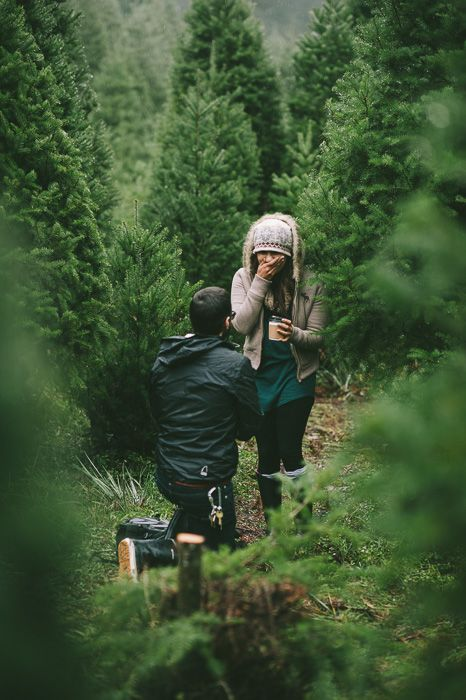 engagement in a christmas tree farm