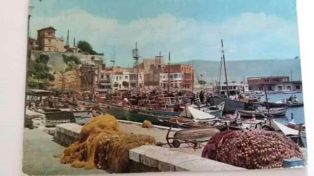 Τουρκολιμανο 1950