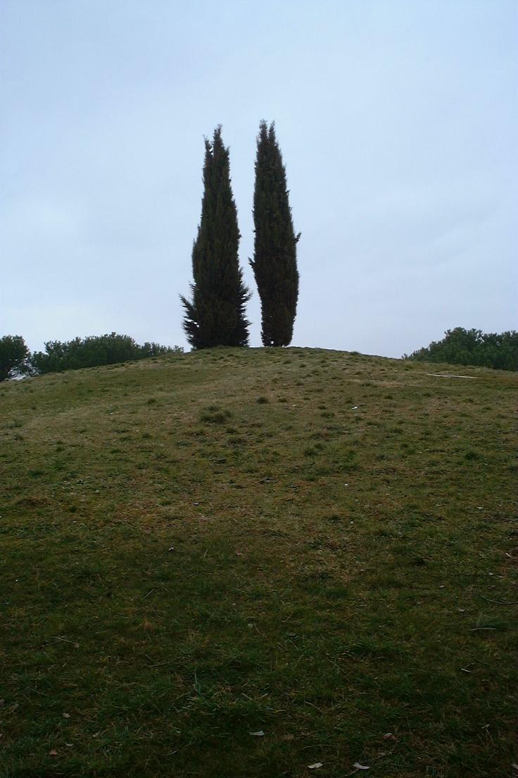 Castellina in Chianti (Tombe etrusche)
