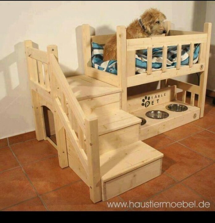 I think our dog needs one of these!