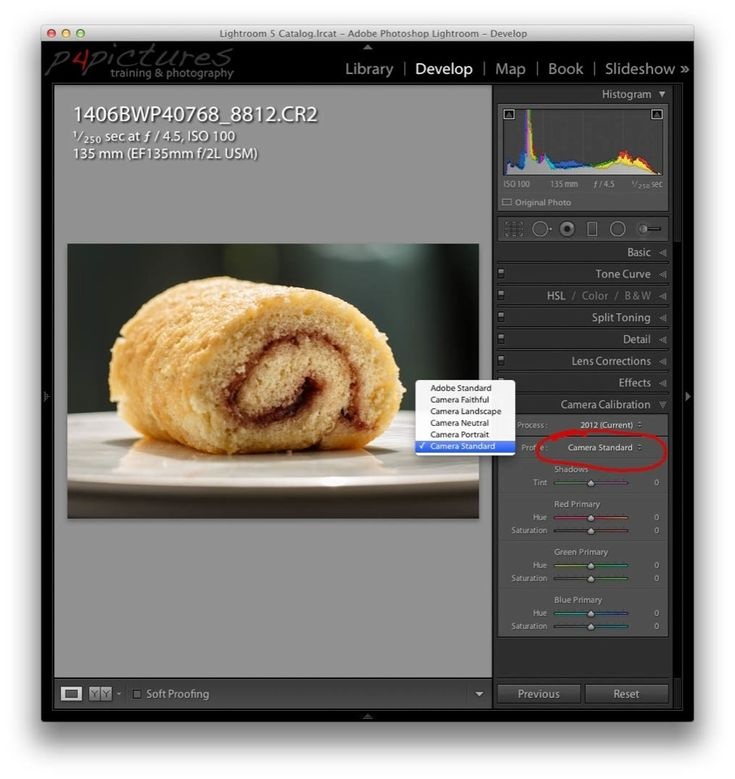 Canon RAW images look different in Lightroom to how they appear on the camera LCD, here's why and how to get a similar look