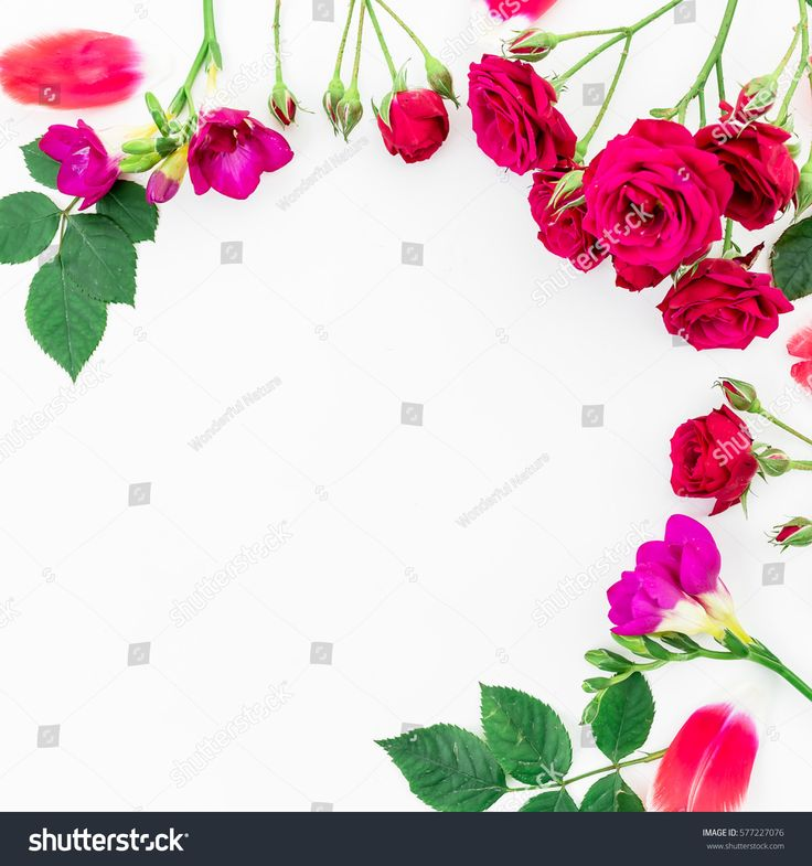 Floral frame made of flowers, green leaves, branches on white background. Flat lay, top view. Floral background