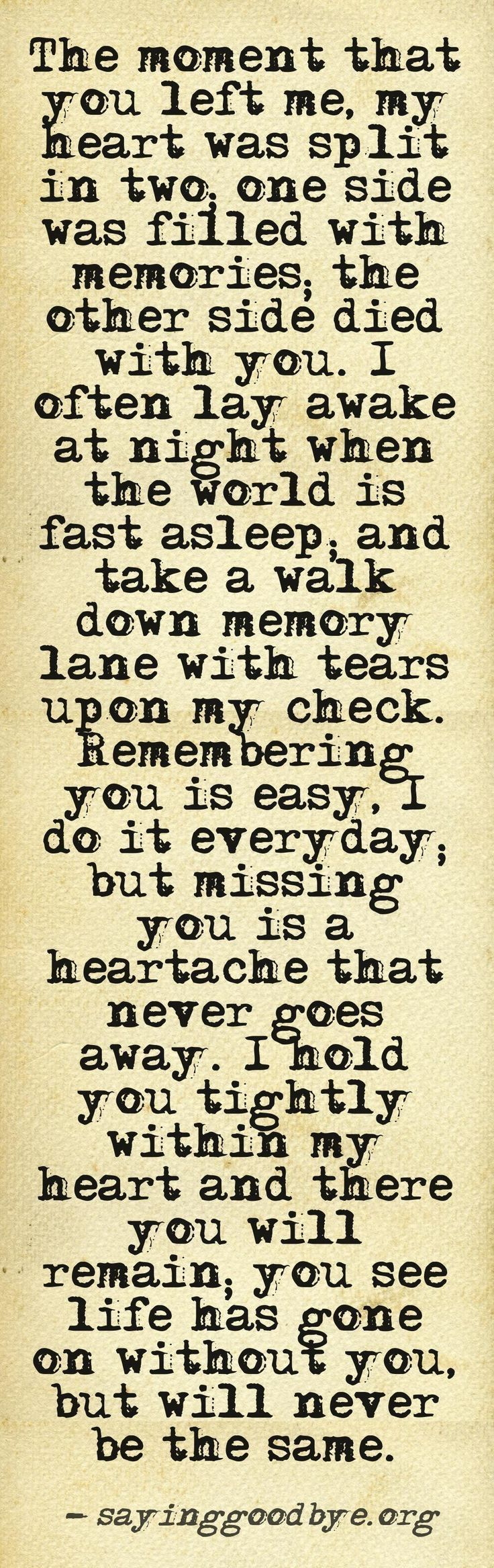 For all my dogs, esp. Abbey and Lola who left us not long ago. I miss you all and it's true... life goes on, but it's not the same without you.