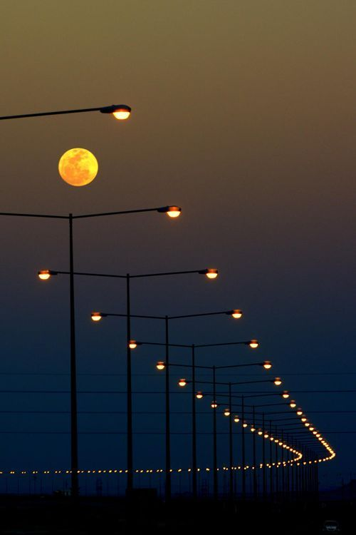 This is a beautiful piece of Repetition in photography. The designer has photographed this landscape of street lamps from a certain angle to make the eye follow the lights down the road into the darkness. The scale and colour makes it a very attractive photograph.