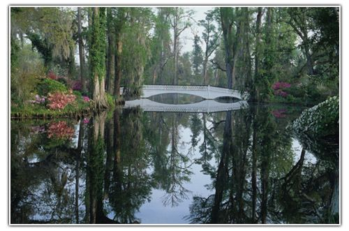 Magnolia Plantation, Charleston.  I want to visit South Carolina every time I read a Pat Conroy novel --- and I've just discovered his latest which I hadn't read before. Hence the renewed interest in Charleston.