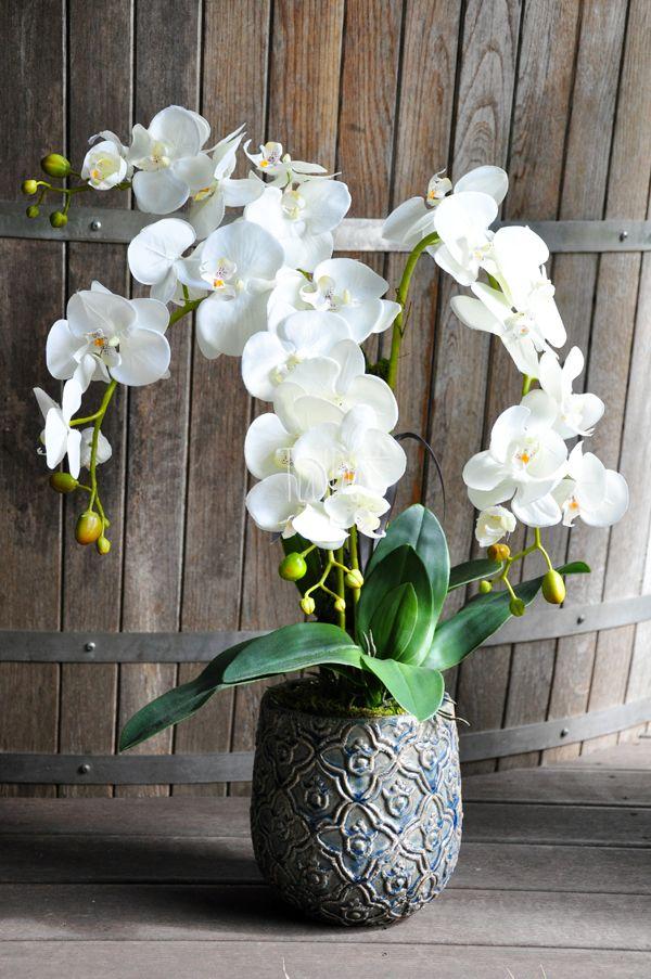 Sztuczne Kwiaty Doniczkowe Z Pracowni Www Tendom Pl Orquideas Arranjos De Flores Flores