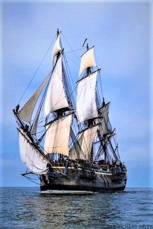 Aarhus to Helsinki Tall Ships Race 2013.